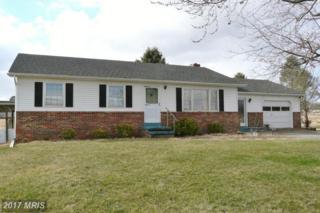 1787 River Road, New Market, VA 22844 (#SH9865874) :: Pearson Smith Realty