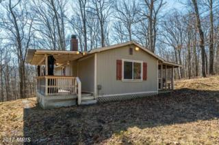 399 Risk Road, New Market, VA 22844 (#SH9868957) :: Pearson Smith Realty