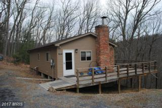 385 Judd Lane, Mount Jackson, VA 22842 (#SH9879497) :: LoCoMusings