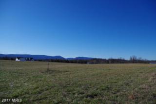 Jadwyn Road Lot 1, Woodstock, VA 22664 (#SH9881328) :: LoCoMusings
