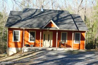 827 Mountain Slope Lane, Fort Valley, VA 22652 (#SH9885401) :: LoCoMusings