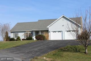 212 Bob White Lane, Quicksburg, VA 22847 (#SH9898274) :: Pearson Smith Realty