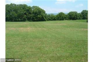 Summers Lane, Mount Jackson, VA 22842 (#SH9910210) :: Pearson Smith Realty
