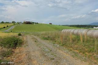 Pinewoods Road, Quicksburg, VA 22847 (#SH9942583) :: Pearson Smith Realty