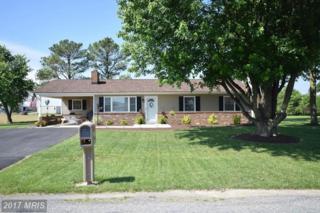 223 Avondale Avenue, Mount Jackson, VA 22842 (#SH9951709) :: Pearson Smith Realty