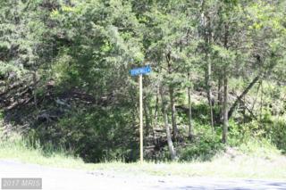 0 Fairway Drive, Basye, VA 22844 (#SH9953569) :: Pearson Smith Realty