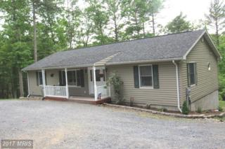 157 Sandpiper Drive, Basye, VA 22810 (#SH9955186) :: Pearson Smith Realty