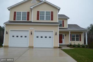 21471 Colleen Place, Lexington Park, MD 20653 (#SM9750314) :: Pearson Smith Realty