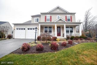 45132 Woodhaven Drive, California, MD 20619 (#SM9835048) :: Pearson Smith Realty