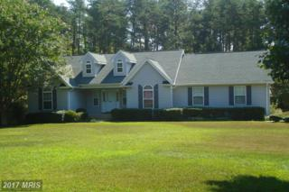 20560 Hickory Creek Court, Leonardtown, MD 20650 (#SM9835261) :: Pearson Smith Realty