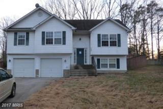 26095 Sycamore Drive, Mechanicsville, MD 20659 (#SM9855904) :: LoCoMusings