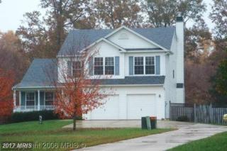 47229 Silver Slate Drive, Lexington Park, MD 20653 (#SM9859289) :: LoCoMusings