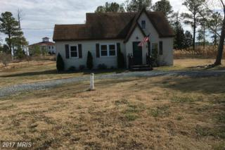 16392 Ball Point Road, Piney Point, MD 20674 (#SM9868713) :: Pearson Smith Realty