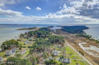 46015 Oconnors Lane, Piney Point, MD 20674 (#SM9878573) :: Pearson Smith Realty