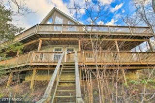 27291 Cat Creek Road, Mechanicsville, MD 20659 (#SM9892985) :: Pearson Smith Realty