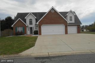 46039 Warwick Drive, Lexington Park, MD 20653 (#SM9899728) :: Pearson Smith Realty