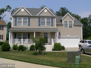 22698 Kinnegad Place, Great Mills, MD 20634 (#SM9902019) :: Pearson Smith Realty