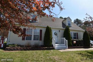 17364 Potomac Sands Drive, Piney Point, MD 20674 (#SM9905126) :: Pearson Smith Realty