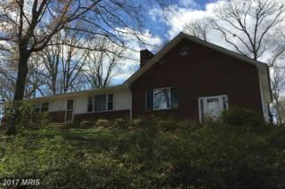 23127 Old Pine Court, California, MD 20619 (#SM9911231) :: Pearson Smith Realty