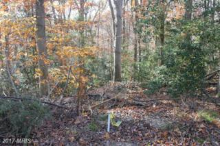 Drum Cliffs/Raspberry Road, Hollywood, MD 20636 (#SM9914705) :: Pearson Smith Realty