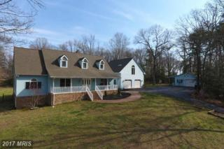 23124 Old Pine Court, California, MD 20619 (#SM9915662) :: Pearson Smith Realty