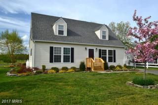 45193 Dory Lane, Piney Point, MD 20674 (#SM9916144) :: Pearson Smith Realty