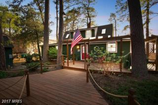 18231 River Road, Tall Timbers, MD 20690 (#SM9920694) :: Pearson Smith Realty