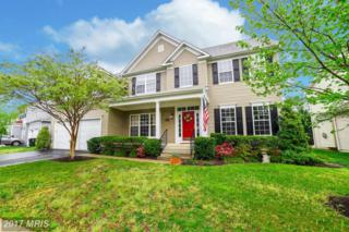 23436 Canna Court, California, MD 20619 (#SM9927417) :: Pearson Smith Realty
