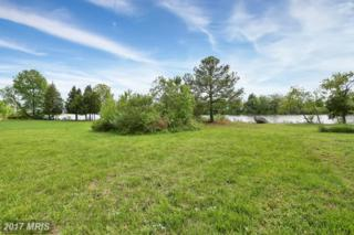 Lot 48 Driftwood Lane, Tall Timbers, MD 20690 (#SM9932697) :: Pearson Smith Realty