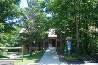 23244 Chestnut Oak Court #1062, California, MD 20619 (#SM9939835) :: Pearson Smith Realty