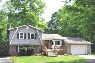 30010 Tomahawk Court, Mechanicsville, MD 20659 (#SM9940209) :: Pearson Smith Realty