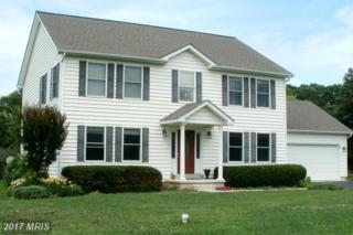 48020 Freehold Drive, Lexington Park, MD 20653 (#SM9950166) :: Pearson Smith Realty