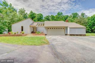 45885 Stoney Court, Great Mills, MD 20634 (#SM9960539) :: Pearson Smith Realty