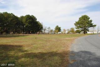 Harbor Road, Princess Anne, MD 21853 (#SO8428567) :: Pearson Smith Realty