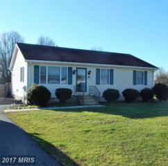 30091 Kristwood Way, Princess Anne, MD 21853 (#SO9849372) :: Pearson Smith Realty