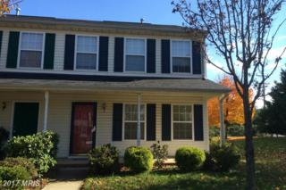 9801 Plaza View Way, Fredericksburg, VA 22408 (#SP9836144) :: Pearson Smith Realty