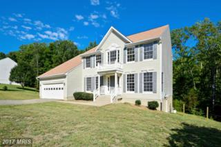 11912 Kingswood Boulevard, Fredericksburg, VA 22408 (#SP9836418) :: Pearson Smith Realty