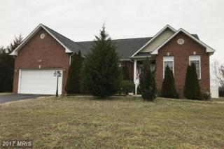 10508 Big Horn Drive, Fredericksburg, VA 22407 (#SP9842175) :: Pearson Smith Realty