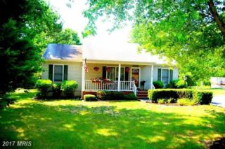 3102 Brown Hill Drive, Fredericksburg, VA 22408 (#SP9846186) :: Pearson Smith Realty