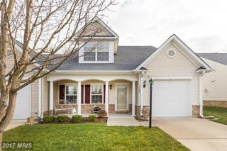10205 Mill Creek Drive, Spotsylvania, VA 22553 (#SP9850445) :: Pearson Smith Realty