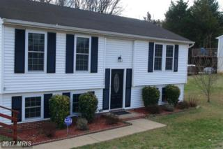 11005 Huntington Woods Circle, Fredericksburg, VA 22407 (#SP9851369) :: Pearson Smith Realty