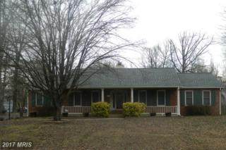 10715 Holleybrooke Drive, Spotsylvania, VA 22553 (#SP9853216) :: LoCoMusings
