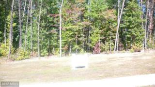 10402 Laurel Ridge Way, Fredericksburg, VA 22408 (#SP9855945) :: Pearson Smith Realty
