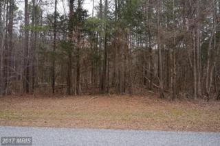 11319 Piney Forest Drive, Bumpass, VA 23024 (#SP9856274) :: LoCoMusings