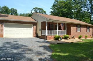 5407 Rye Hill Trail, Mineral, VA 23117 (#SP9856397) :: Pearson Smith Realty
