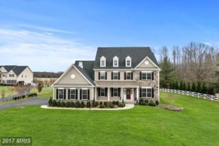 9901 Agnes Lane, Spotsylvania, VA 22553 (#SP9858236) :: Pearson Smith Realty