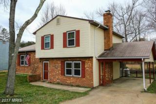 6040 Battlefield Green Drive, Fredericksburg, VA 22407 (#SP9863195) :: Pearson Smith Realty