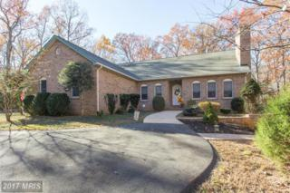102 Goldvein Drive, Fredericksburg, VA 22407 (#SP9865861) :: Pearson Smith Realty