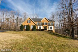 11925 Sawhill Boulevard, Spotsylvania, VA 22553 (#SP9868849) :: Robyn Burdett Real Estate Group