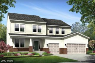 Baron Drive, Fredericksburg, VA 22408 (#SP9868868) :: Pearson Smith Realty